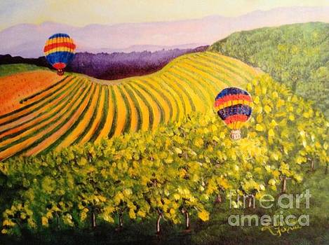 Balloons over napa valley  by Laurine  Fuqua
