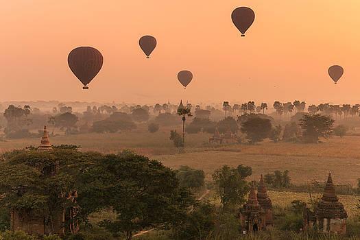 Balloons sky by Marji Lang