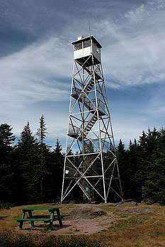 Balsam Lake Mountain Firetower by Brian Lucia