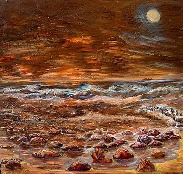 Baltic Sea storming by Alexander Bukhanov