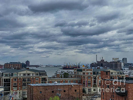 Baltimore Inner Harbor view from Federal Hill by Jason Sullivan