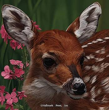 Bambi by Danny Day