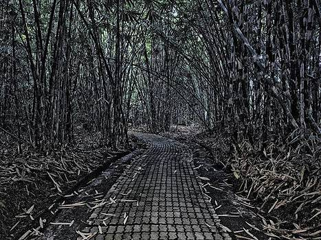 Bamboo Forest by Arya Swadharma