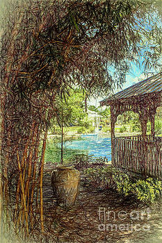 Bamboo garden by David Lane