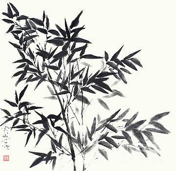 Bamboo In Its Full Grace by Nadja Van Ghelue