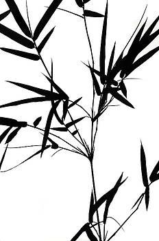 Jenny Rainbow - Bamboo  Poems