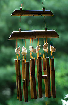 Bamboo Wind Chimes, Hunter Hill, Hagerstown, Maryland, June 10,  by James Oppenheim