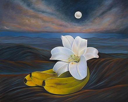 Moonlight Genesis by Birgit Seeger-Brooks