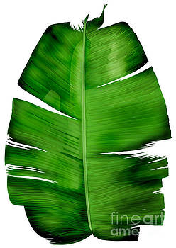 Banana Leaf Painting by Three second