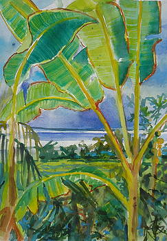 Banana Leaves by Diane Renchler