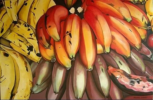Michael Earney - Banana Medley - Jocotepec