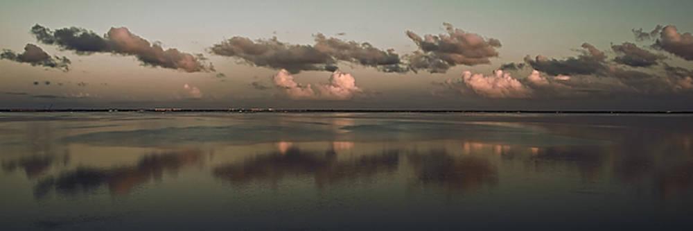 Banana River Reflections by Ron Dubin