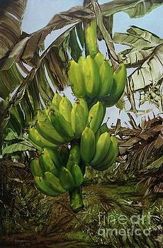Banana Tree by Chonkhet Phanwichien