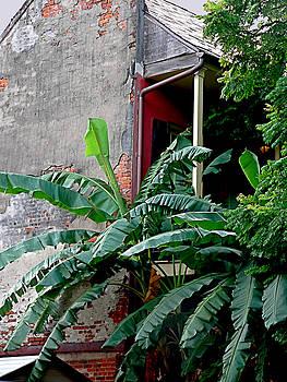 Bananas And Bricks by Kathy K McClellan