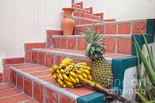 Bananas and Pineapple on Terracotta Steps by Catherine Sherman