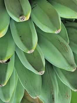 Bananas by Steve McKnight