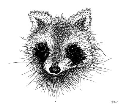 Bandit the raccoon by Abstract Angel Artist Stephen K