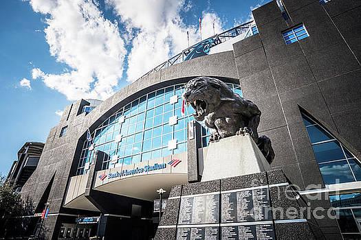 Paul Velgos - Bank of America Stadium Carolina Panthers Photo
