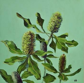 Banksias Australian Flora Painting by Chris Hobel