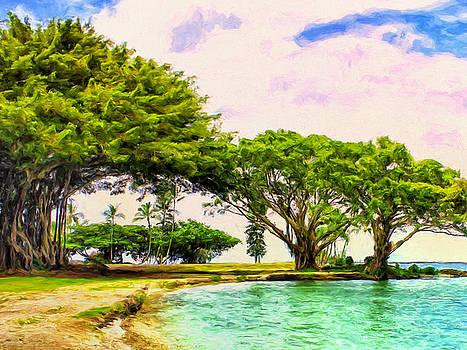 Dominic Piperata - Banyan Trees at Reeds Bay Hilo