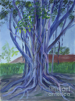 Banyon Tree at Boca Museum School by Donna Walsh