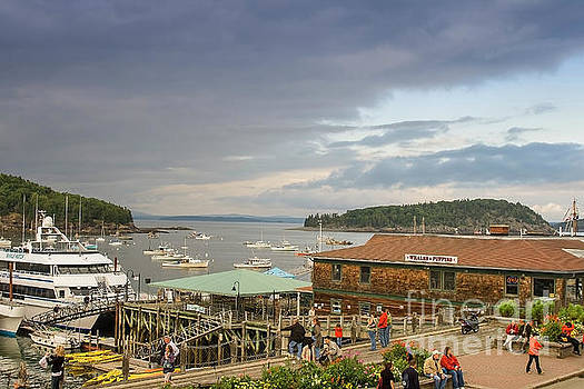 Bar Harbor waterfront by Patricia Hofmeester