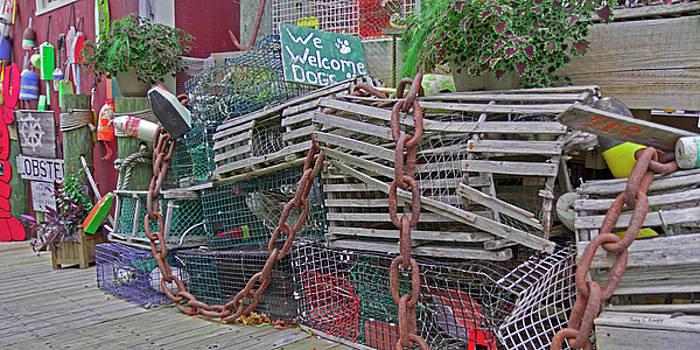 Bar Harbor Where We Love Dogs by Betsy Knapp
