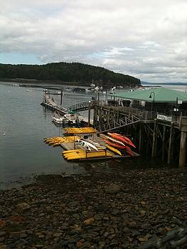 Bar Harbor by Yvonne Breen