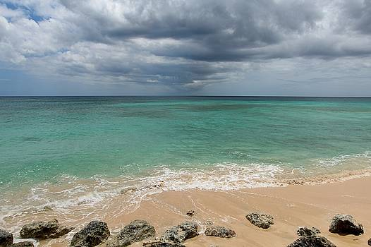 Barbados Blues by Adrienne Christian