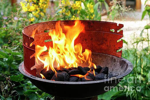 Barbecue with flames by Patricia Hofmeester