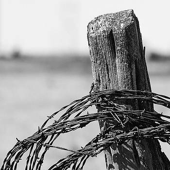 Barbed Post by Nathan Hillis