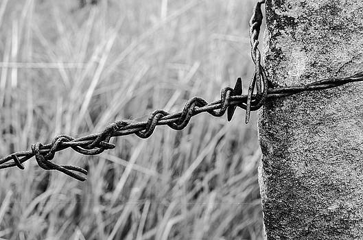Barbed Wire and Stone in Black and White by Kassie Nelson