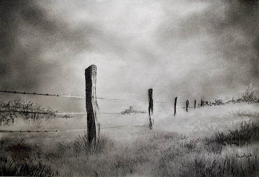 Barbed Wire Fence by Prateek Sabharwal