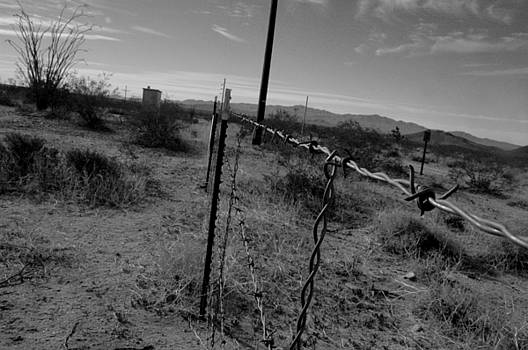 Barbed Wire by Misty Achenbach