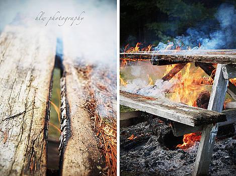 Barbeque Picnic by Hannah Warburton