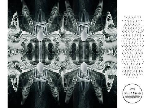 Bardo Thodol / Matrix Gates by Catalin Negrea