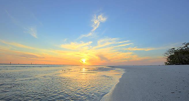 Barefoot Sunset by Sean Allen