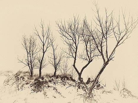 Barely There by Winnie Chrzanowski