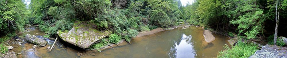 Sam Davis Johnson - Bark Camp Creek 16