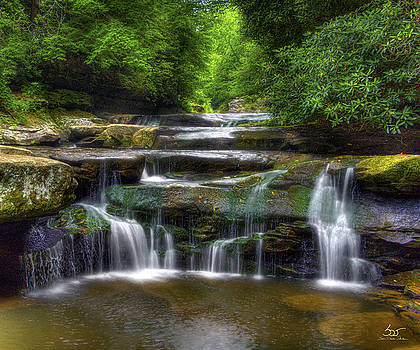 Sam Davis Johnson - Bark Creek #1