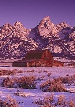 Barn And Grand Tetons  by Floyd Bond