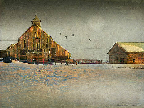 Barn At Cherry Creek by R christopher Vest