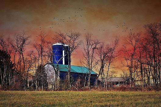Barn At Sunrise by Stephanie Calhoun