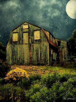 Barn by the Beach by RC DeWinter