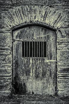 Andrew Wilson - Barn Door