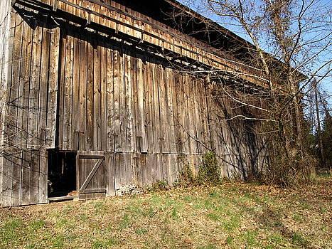Barn Door by Kim