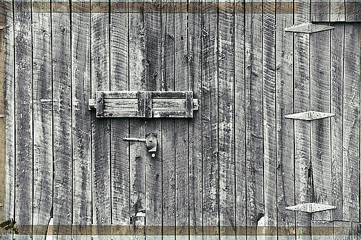 Barn Door by Steve Archbold