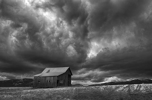 Barn in BW by Diane Hawkins