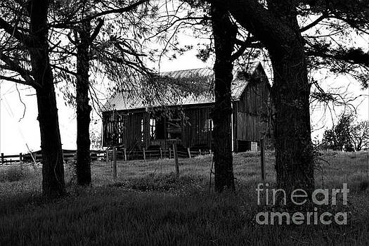 Barn In Decay by Chuck Hicks