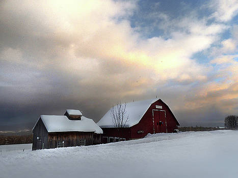 Barn in Solitude by Nancy Griswold